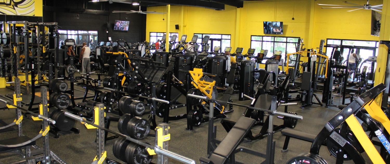 MacFit360 – Fitness & Performance Gym – IGNITE-ENERGIZE
